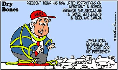 Dry Bones cartoon, America, 2020,Presidency, Israel,Judea and Samaria,Trump,