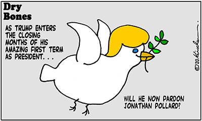Dry Bones cartoon, America, pardon,Presidency, Israel,Pollard,Trump,