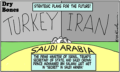 Dry Bones cartoon, Iran, 2020,Trump,Israel,Pompeo,Saudi Arabia,MBS, Turkey,