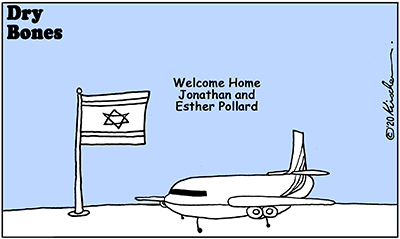 Dry Bones cartoon, America, Jonathan, Esther, Israel, Pollard,