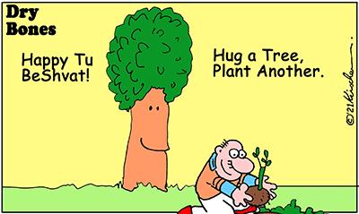 Dry Bones cartoon,Holiday,Tu BeShvat,Tu B'Shvat, 2021,