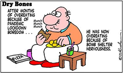 Dry Bones cartoon,donate,Missile Attack, Shuldig, Gaza,