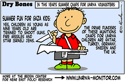 Dry Bones cartoon,donate,Gaza, genocide, summer camps, Hamas, Jews, Israel, children,